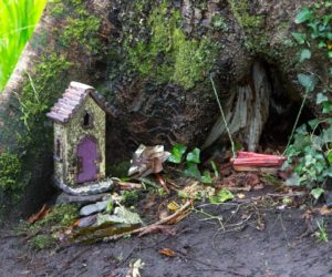 Fairy House Derrynane